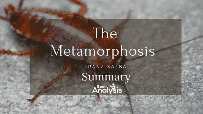 The Metamorphosis Summary 1